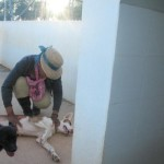 Wendy Datta Chimo  & Cesar-Gaia File