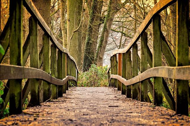 The  Bridge:New Horizons